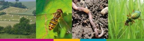Fiches-Agriculture-Biodiversité