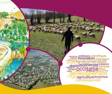 Illustration du libret de bilan du programme PSDR4 Occitanie