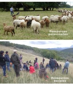 Ressources Personnelles et sociales pour la transition agroécologique