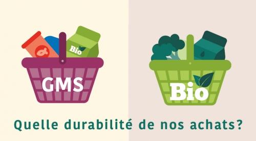Illustration Achats en GMS / magasins bio
