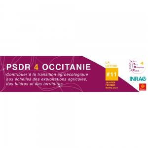 Header de la lettre d'information PSDR4 Occitanie N°11