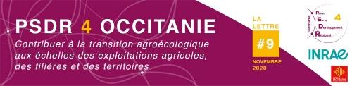 Header de la lettre d'information PSDR4 Occitanie N°9