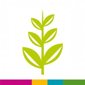 Fiche 7 : Fertilisation et Organismes du sol